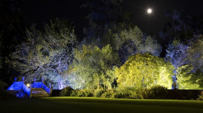 Gardens by night